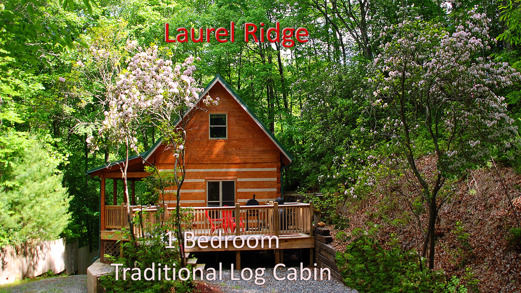 north rental ga ridge blue river riverwatch rentals cherokee georgia cabin nc watch cabins